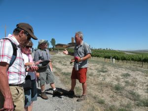 Geologist and viticulturist Alan Busacca at Red Mountain (photo: Gretchen Sorensen)