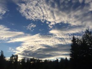Midnight sky in Fairbanks on the summer solstice (photo: Gene Stout)