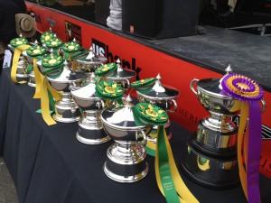 Trophies awaiting their recipients (photo: Gene Stout)